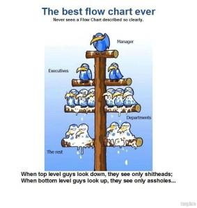 the-best-blow-chart-ever-bird-shit